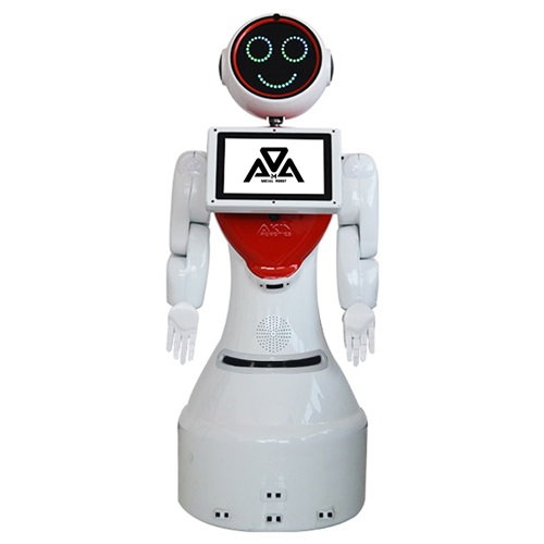 MİNİ ADA İNSANSI ROBOT